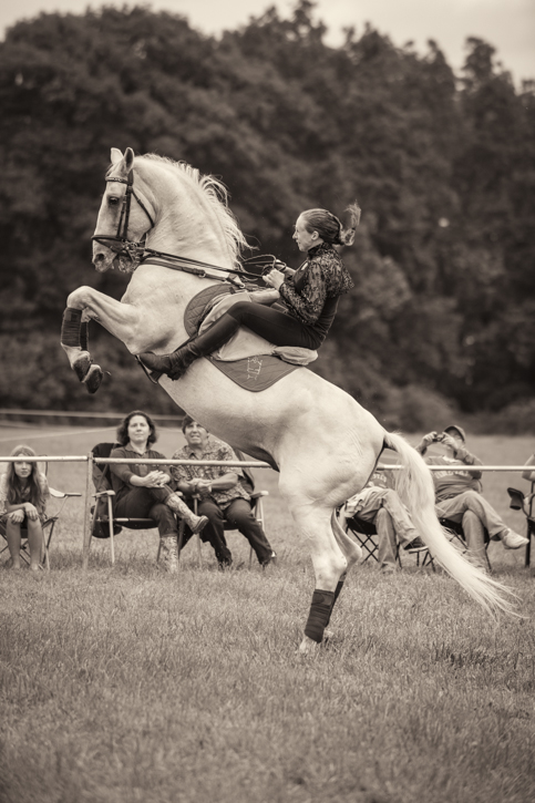 Amy Pranger on a Lipizzan during exhibition.  I later learned that this horse behavior was not a part of the show!