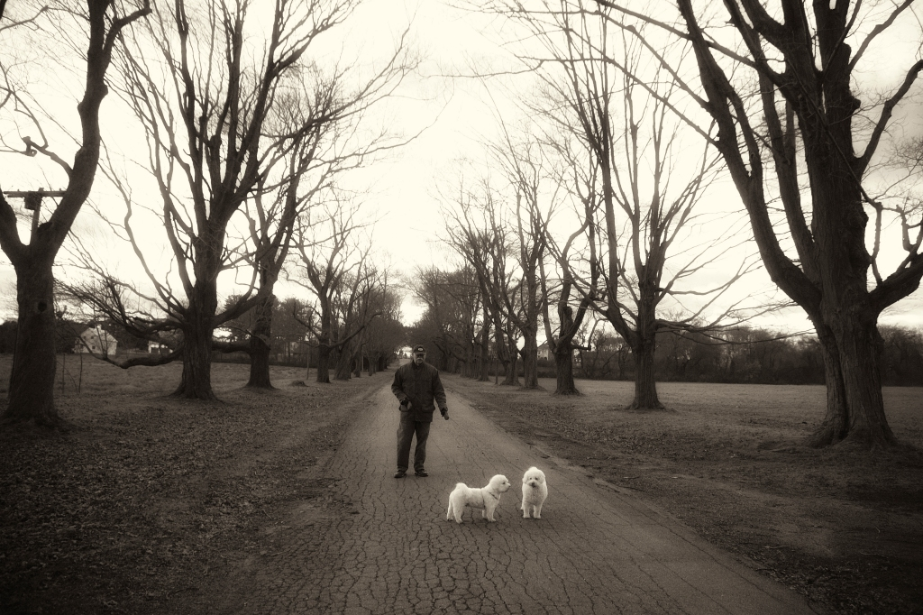 Mike with his dogs at the farm