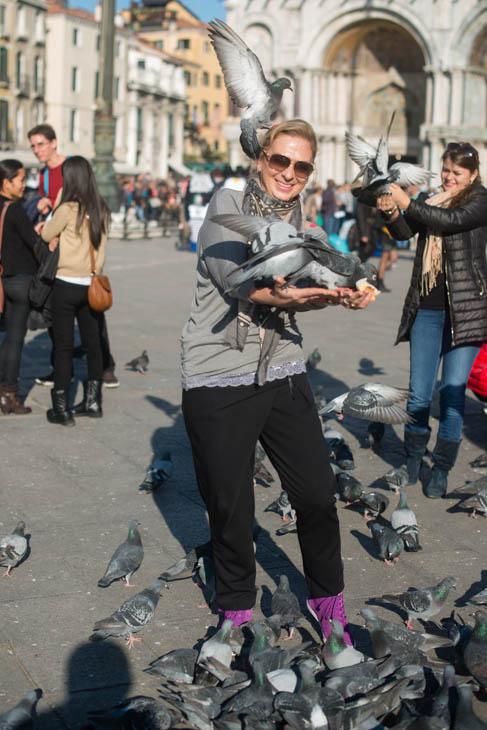 pigeons in San Marco