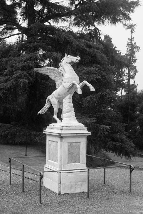 in the gardens of the Pitti Palace