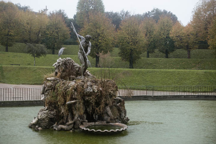 great blue heron on sculpture at The Pitti Palace