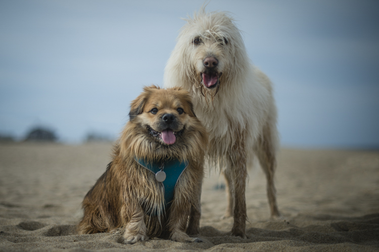 I remember...these two very best friends, Berklee and Angel...